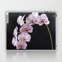 Orchid Spike Laptop & iPad Skin