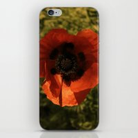 woodstock iPhone & iPod Skins featuring woodstock flowers by Teresa Gabry