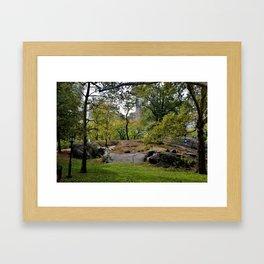 Central Park Life Framed Art Print