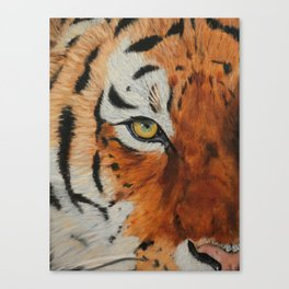 Tiger Eye Canvas Print
