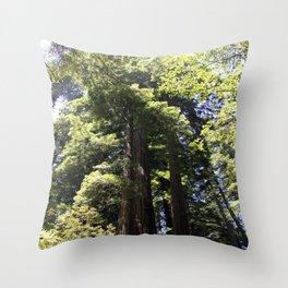 Redwood Treetops Throw Pillow