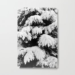 Snow Covered Fir Tree Metal Print