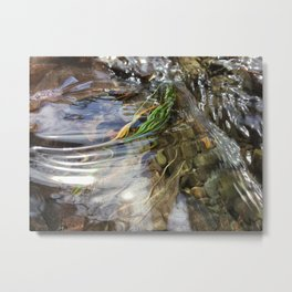 Water Ripples Metal Print