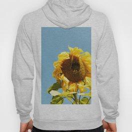 Harvest Sunflower Hoody