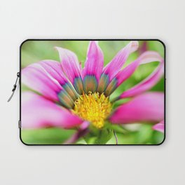 Bright Multi-color African Daisy Laptop Sleeve