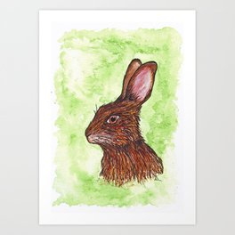 Wild hare original watercolour and Ink Art Print