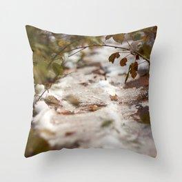 Fall Canada Throw Pillow