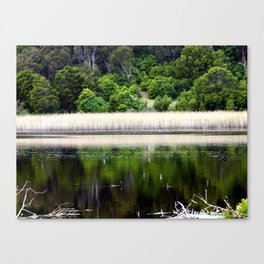 Tower Hill Wildlife Reserve Canvas Print
