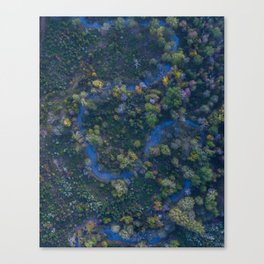Fall in the Bayou Canvas Print