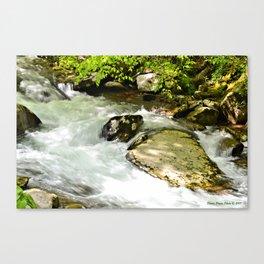 Smoky Mountain River Canvas Print