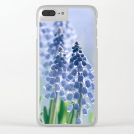Grape hyacinths muscari 278 Clear iPhone Case