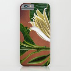 Magnolia Slim Case iPhone 6s