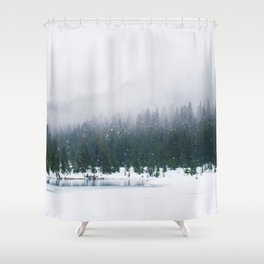 Evergreen Winter Forest (Color) Shower Curtain