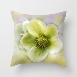 the beauty of a summerday -69- Throw Pillow