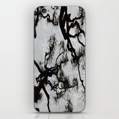 Tradition iPhone & iPod Skin