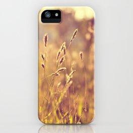 Warm Summer Eve iPhone Case