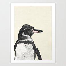 Galapagos Pengin Art Print