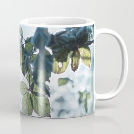 Freezing over Coffee Mug