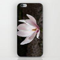 magnolia iPhone & iPod Skins featuring Magnolia by Guna Andersone & Mario Raats - G&M Studi