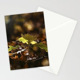 Oak leaves in forest with yellow colors in Autumn Stationery Cards