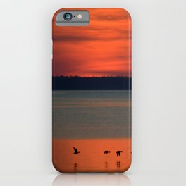 A flock of geese flying north across the calm evening waters of the bay iPhone Case