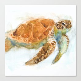 Watercolour Turtle Canvas Print