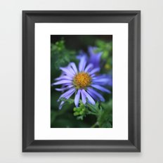Blossom 2 Framed Art Print