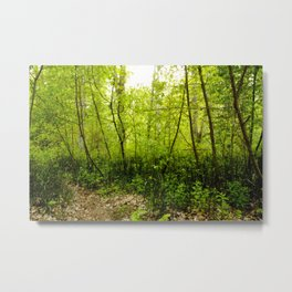 The Place Beyond Metal Print