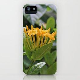 Reinventing Mona iPhone Case