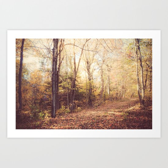 New England Autumn Art Print