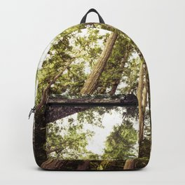 The Canopy Backpack