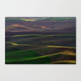 The Palouse Hills at Sunset Canvas Print