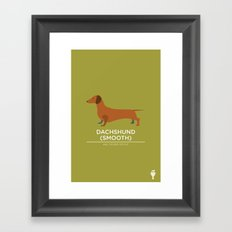 Dachshund (Smooth) Framed Art Print
