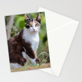 Are you meowing to me? Stationery Cards