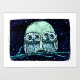 Northern Saw-whet Owls Art Print