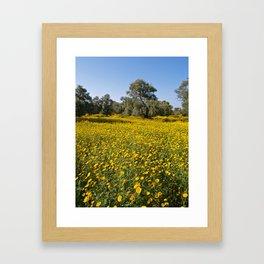 Cyprus Wildflower Meadow Framed Art Print