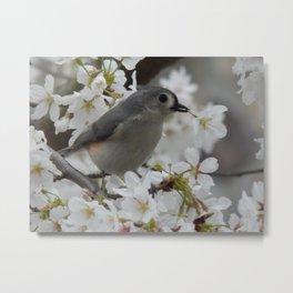 Blossom sweetness Metal Print