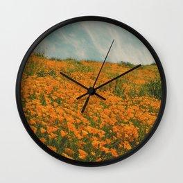 California Poppies 016 Wall Clock