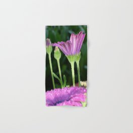 Purple And Pink Daisy Flower in Full Bloom Hand & Bath Towel