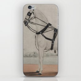 Vintage Carriage Horse Painting (1845) iPhone Skin