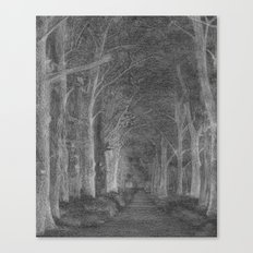 Moonwood Path Canvas Print