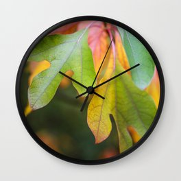 fall sassafras leaves Wall Clock