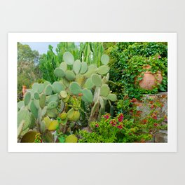 Cactus and Ivy on Stone Wall Art Print