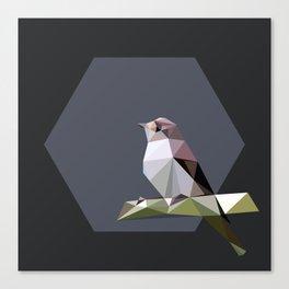 Spotted flycatcher Canvas Print