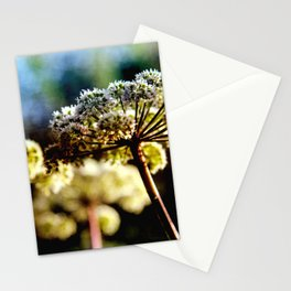Heracleum in August Stationery Cards