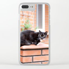lonely stray black cat sitting Clear iPhone Case