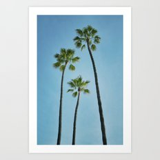 Three Palms Art Print