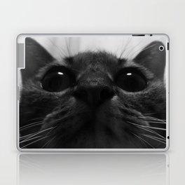 a cat Laptop & iPad Skin