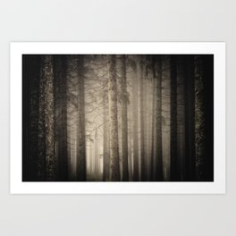Dark, misty forest at late autumn Art Print