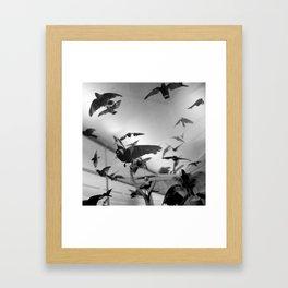 winged flight Framed Art Print